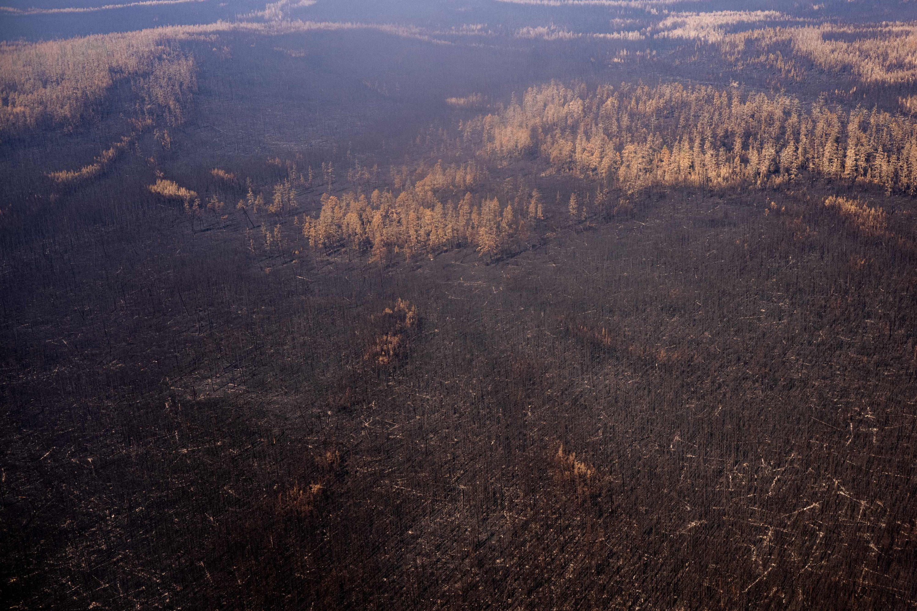 An aerial view of a burned forest at the Gorny Ulus area west of Yakutsk, in the Republic of Sakha, Siberia, Russia, July 27, 2021. (AFP Photo)