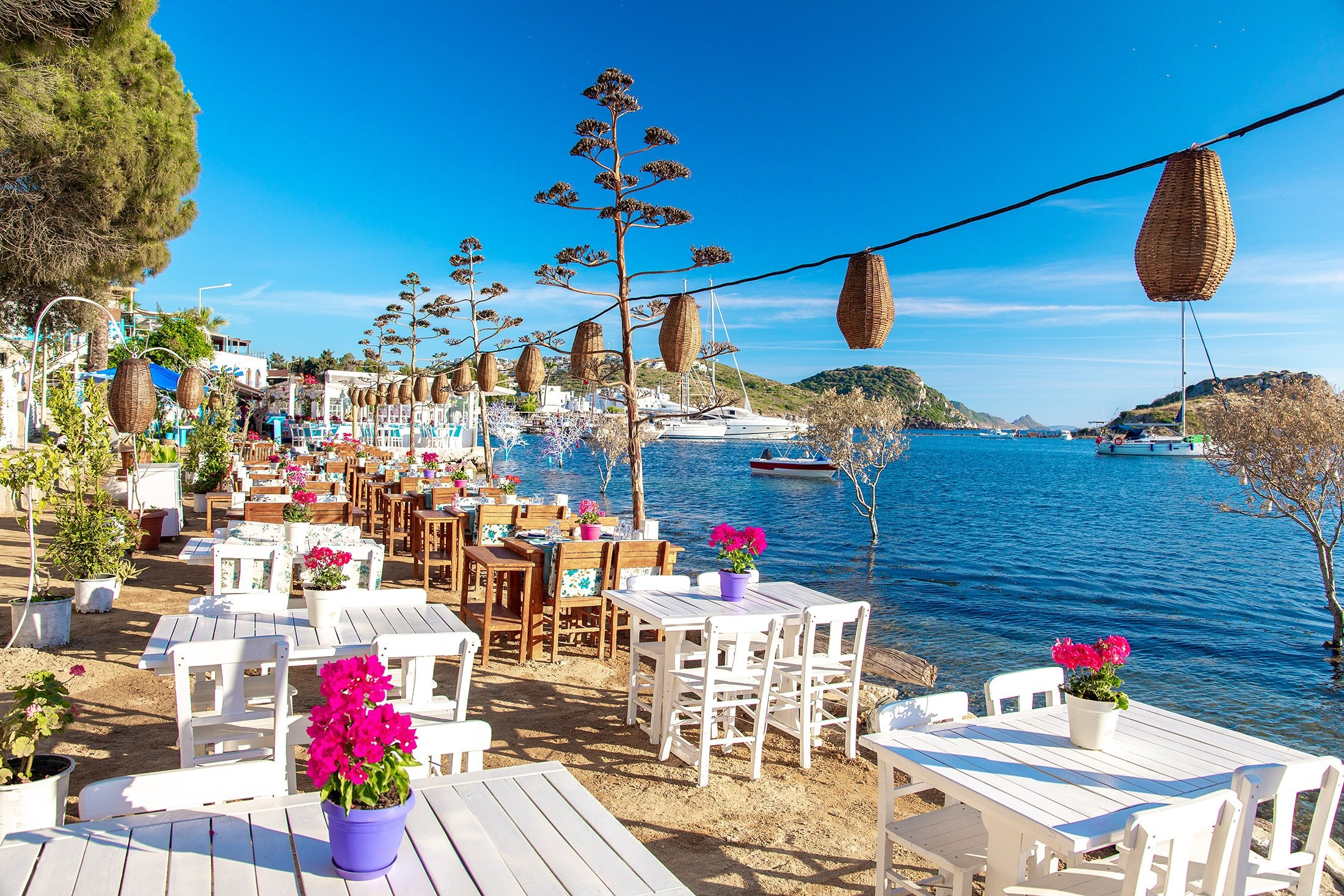 View of a cafe and bougainvillea flowers on a beach in Bodrum, Turkey. (Shutterstock Photo)