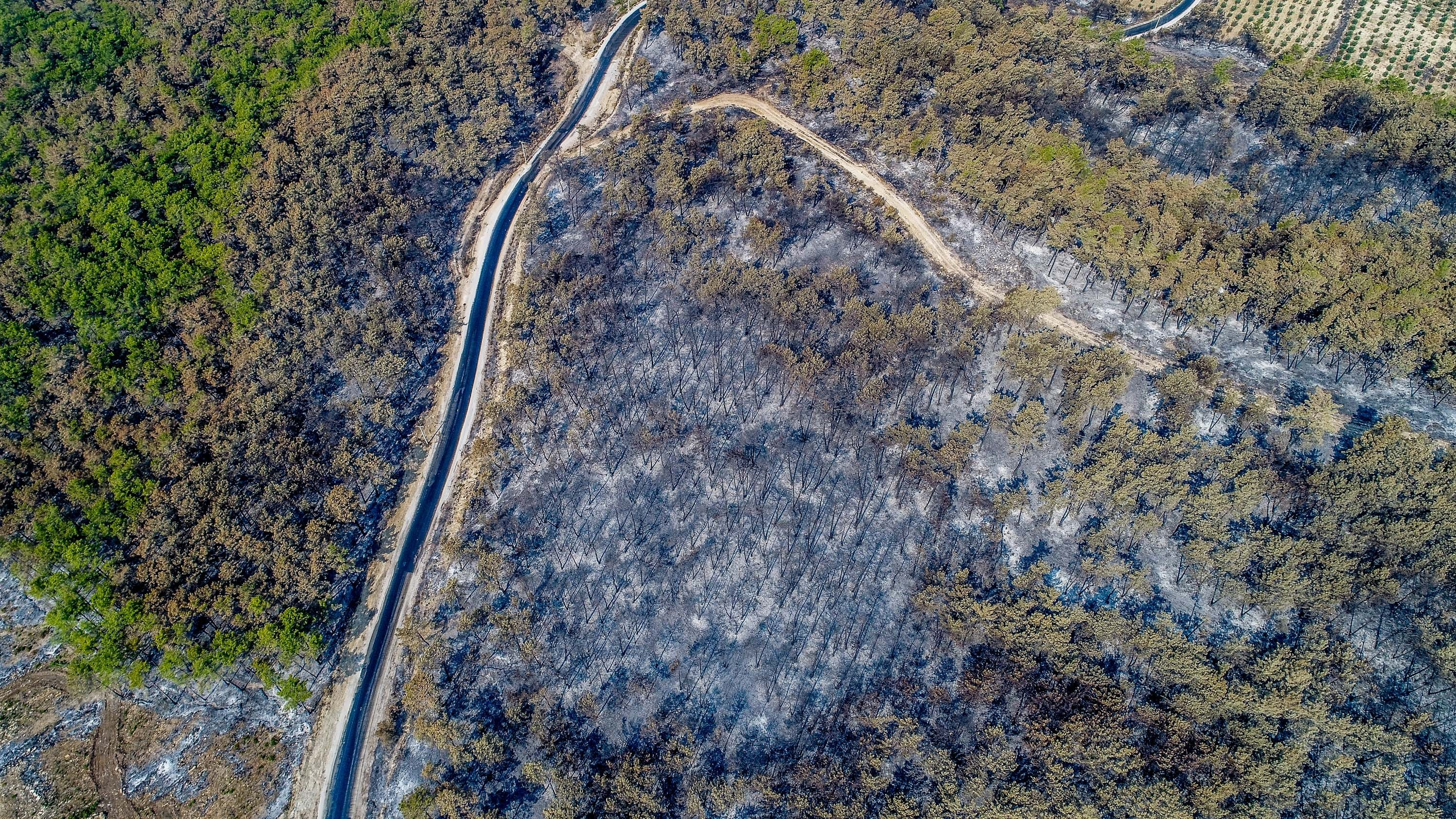 An aerial view of a burned patch of a forest, in Manavgat district, in Antalya, southern Turkey, Aug. 6, 2021. (DHA PHOTO)