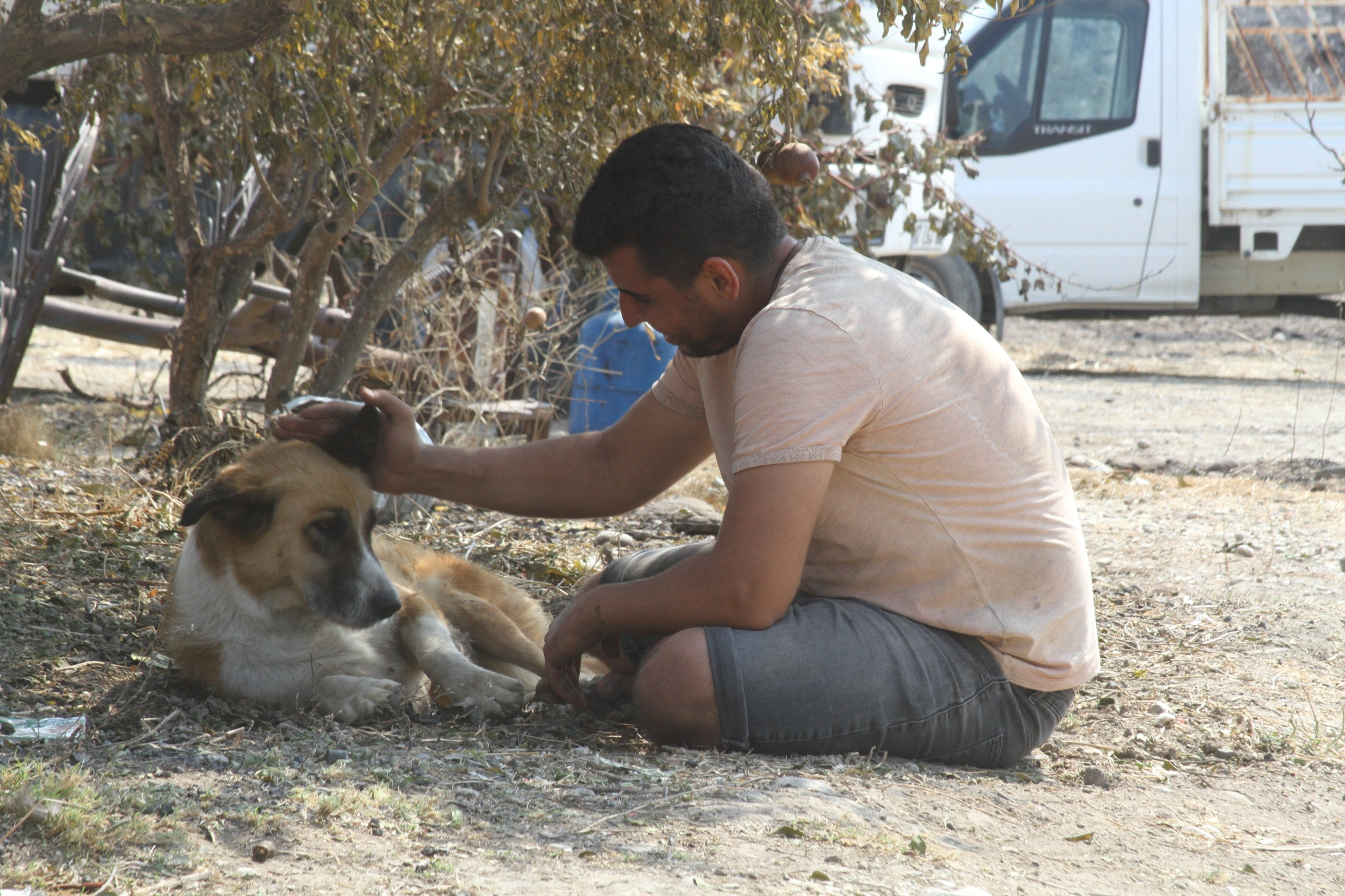 Sercan Bayar pets his dog who returned four days later after his disappearance, in Antalya, southern Turkey, Aug. 6, 2021. (IHA PHOTO)