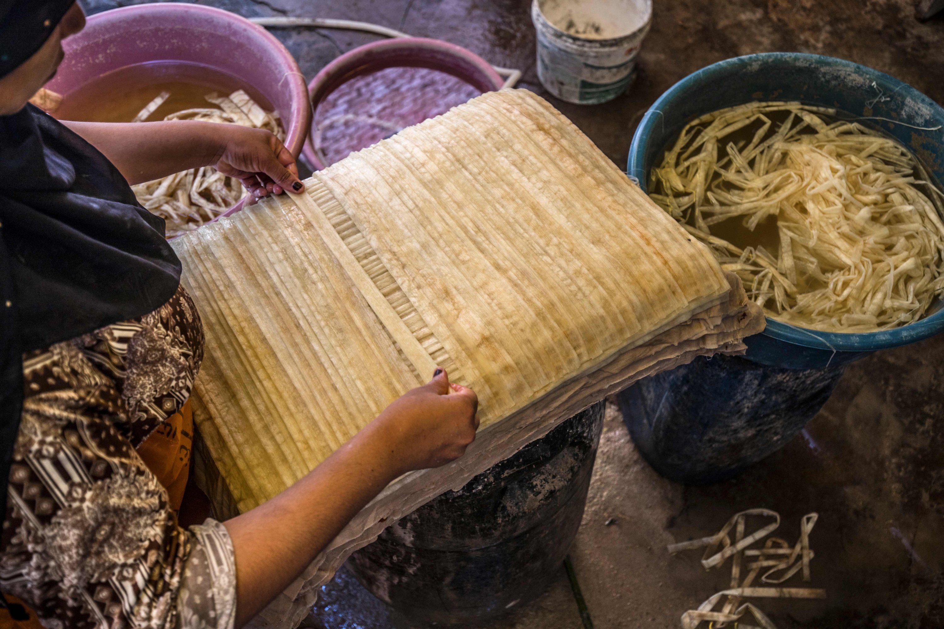 A woman lays out soaked thin strips of papyrus to form a sheet, before compression and drying at the workshop in the village of al-Qaramous in Sharqiyah province, in Egypt