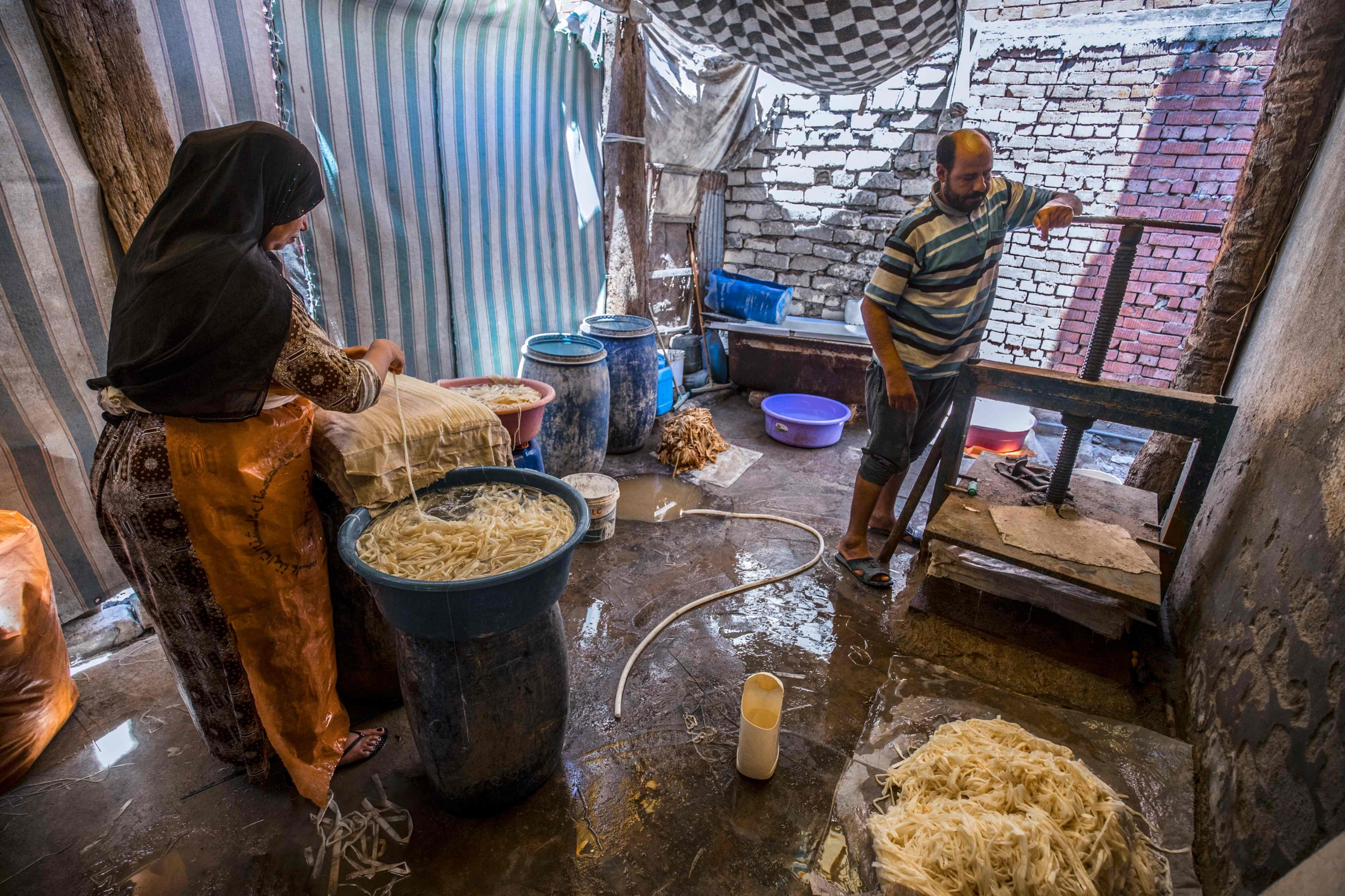 Abdel Mobdi Moussalam, 48 (R) and an assistant prepare soaked papyrus strips before compression and drying at the workshop in the village of al-Qaramous in Sharqiyah province, in Egypt