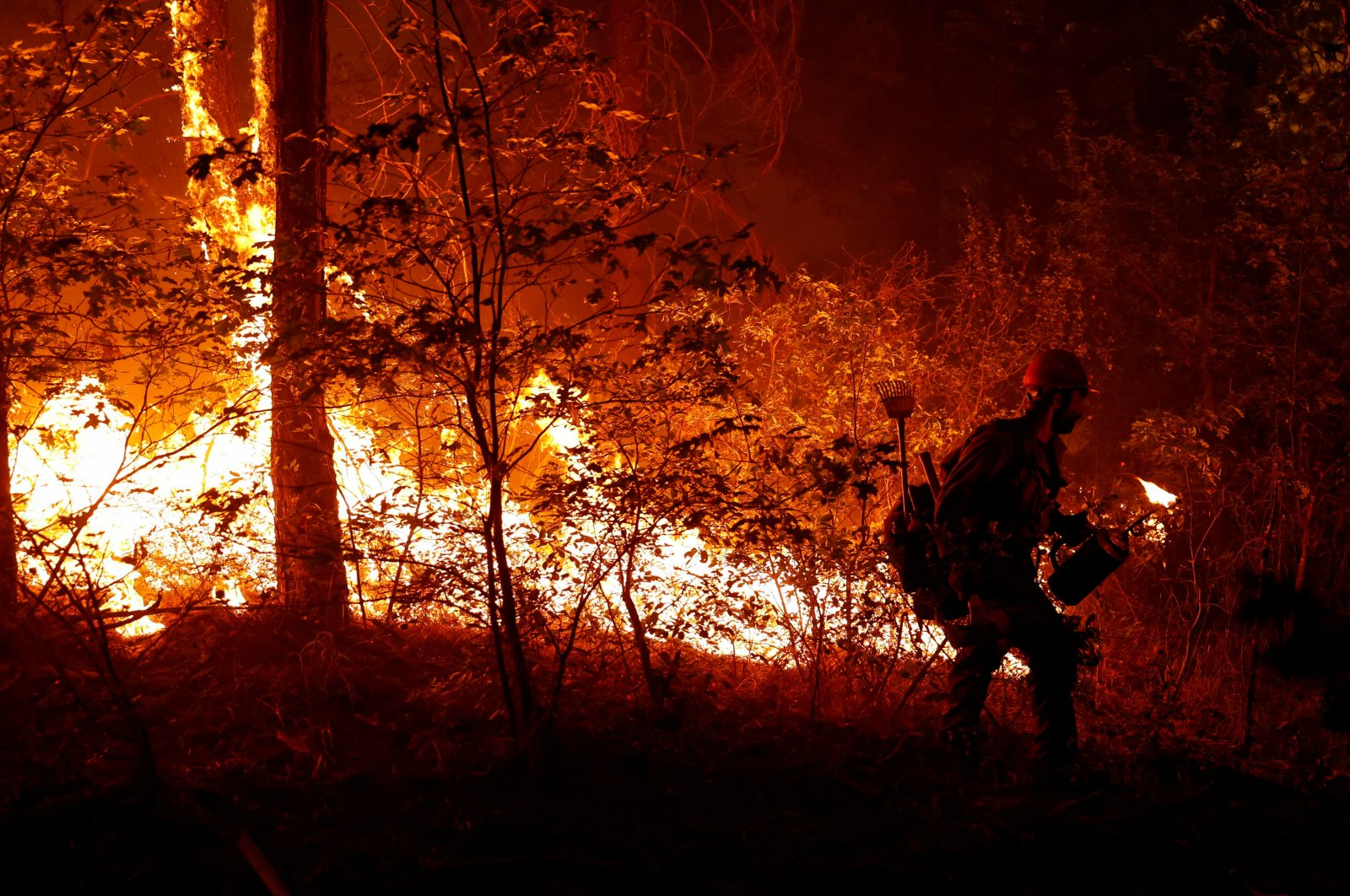 U.S. Forest Service firefighter Ben Foley lights backfires to slow the spread of the Dixie Fire, a wildfire near the town of Greenville, California, U.S., Aug. 6, 2021. (Reuters Photo)