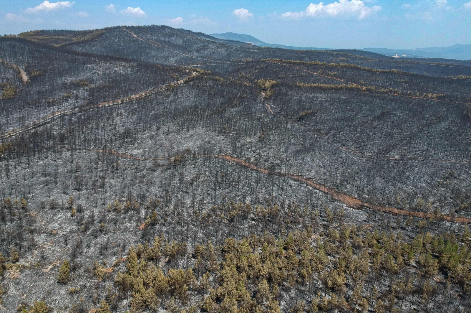 A ravaged area and burnt trees in Muğla district, southern Turkey, Aug. 7, 2021. (AFP Photo)
