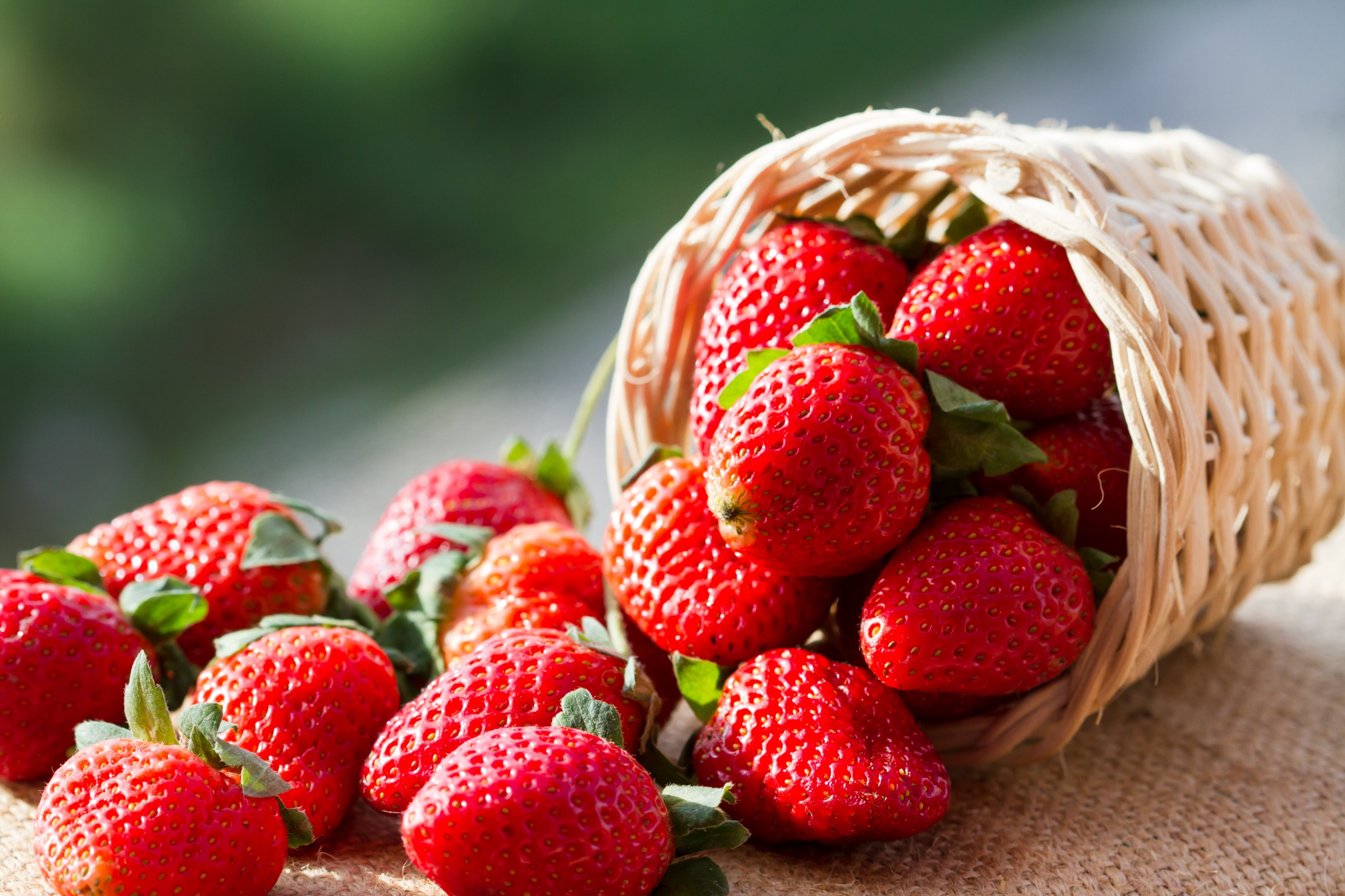 You can manage your sweet tooth by having fruits like strawberries that offer a number of benefits while satisfying the craving for something sweet. (Shutterstock Photo)