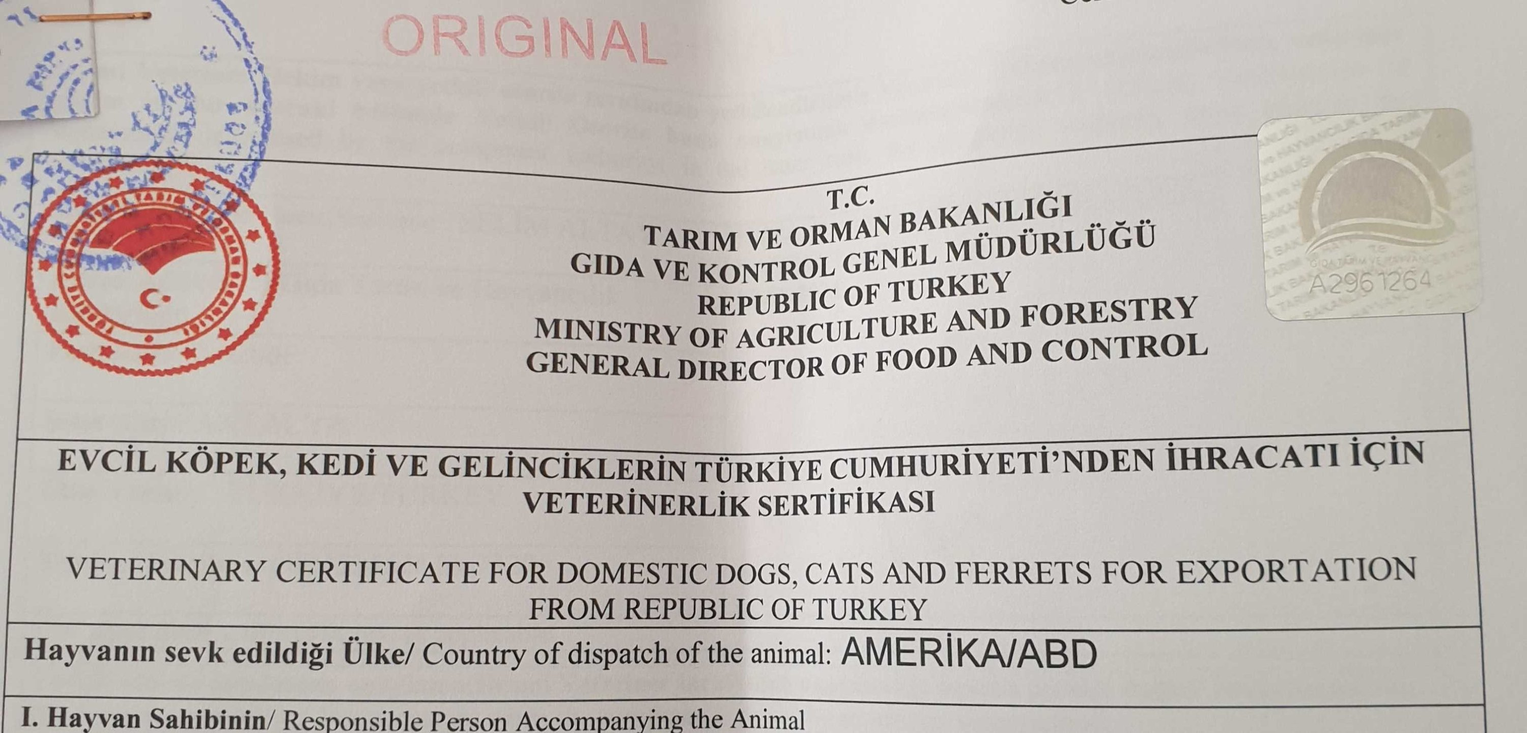A Veterinary Certificate for Domestic Dogs, Cats and Ferrets for Exportation from the Republic of Turkey. (Daily Sabah Photo)