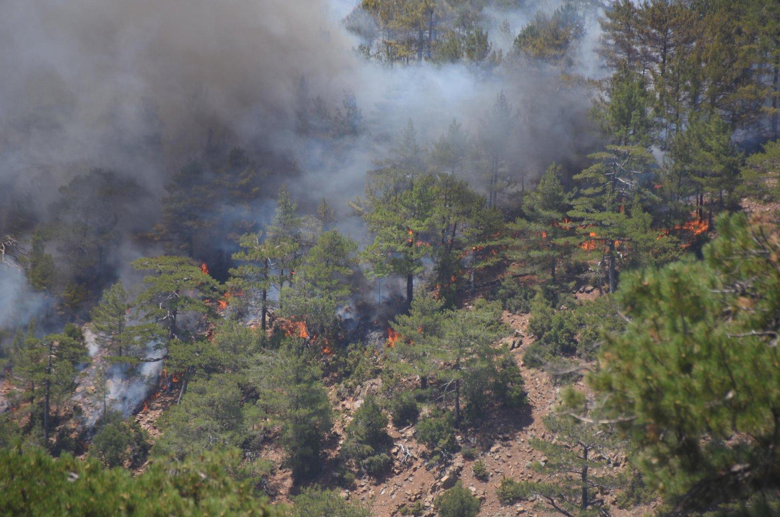 A view of the forest fire in Köyceğiz district, in Muğla, southwestern Turkey, Aug. 10, 2021. (DHA PHOTO)