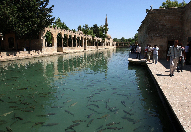 Fish swim in Balıklıgöl, also known as Abraham's Pool, in Şanlıurfa. (Shutterstock Photo)