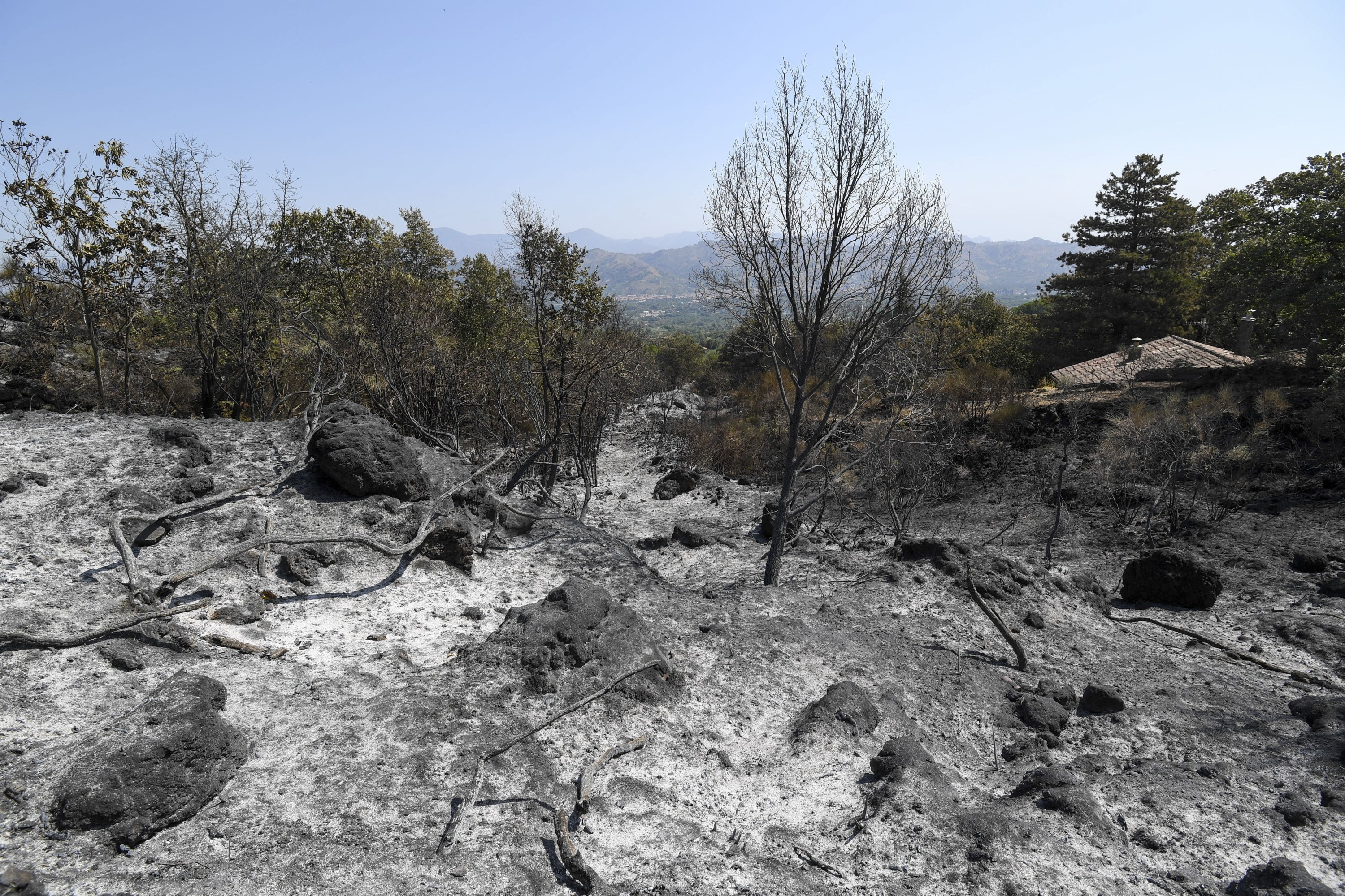 A view of a burnt forest, in Linguaglossa, on the slopes of Mount Etna, near Catania, Sicily, Italy, Aug. 13, 2021. (AP Photo)