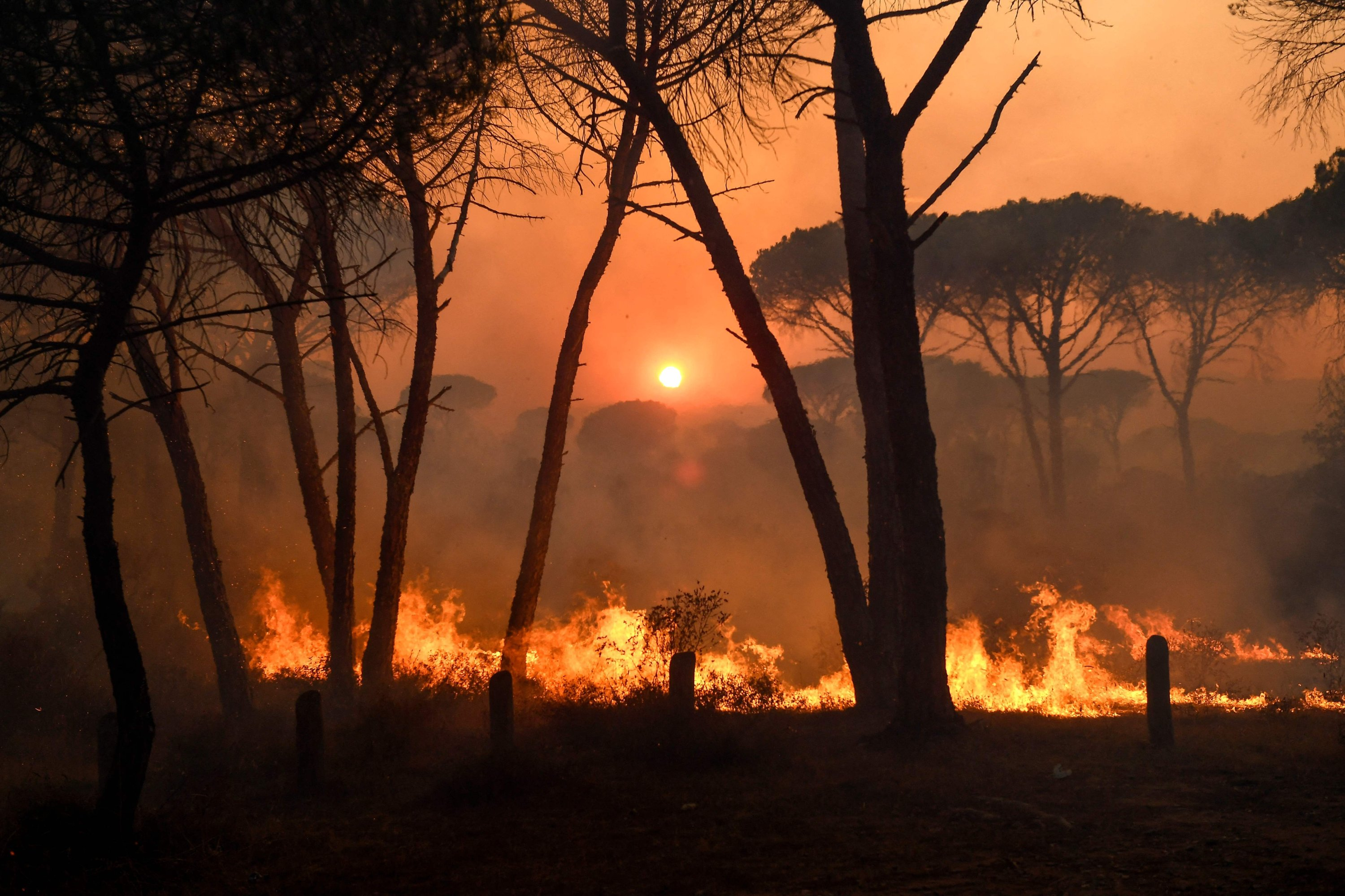 Flames rise as light from the setting sun is filtered through smoke during a forest wildfire, near Gonfaron, in the department of Var, southern France, on Aug. 17, 2021. (AFP Photo)