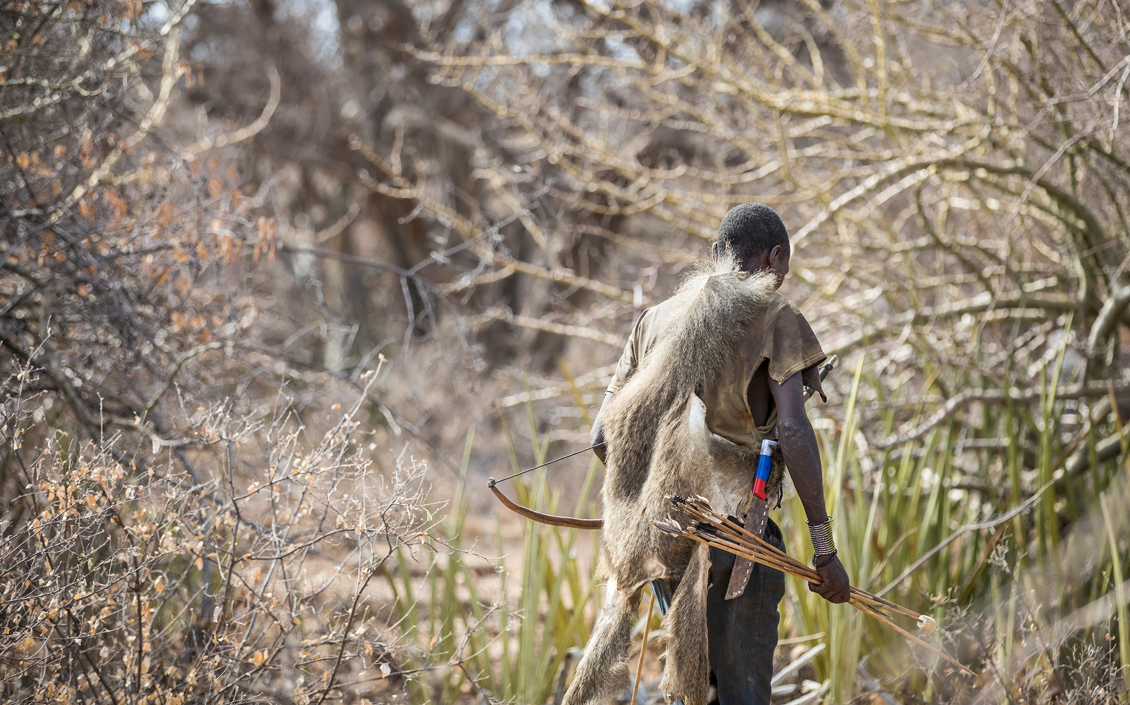 A Hadza hunter carries bow and arrows in northern Tanzania. (Shutterstock Photo)
