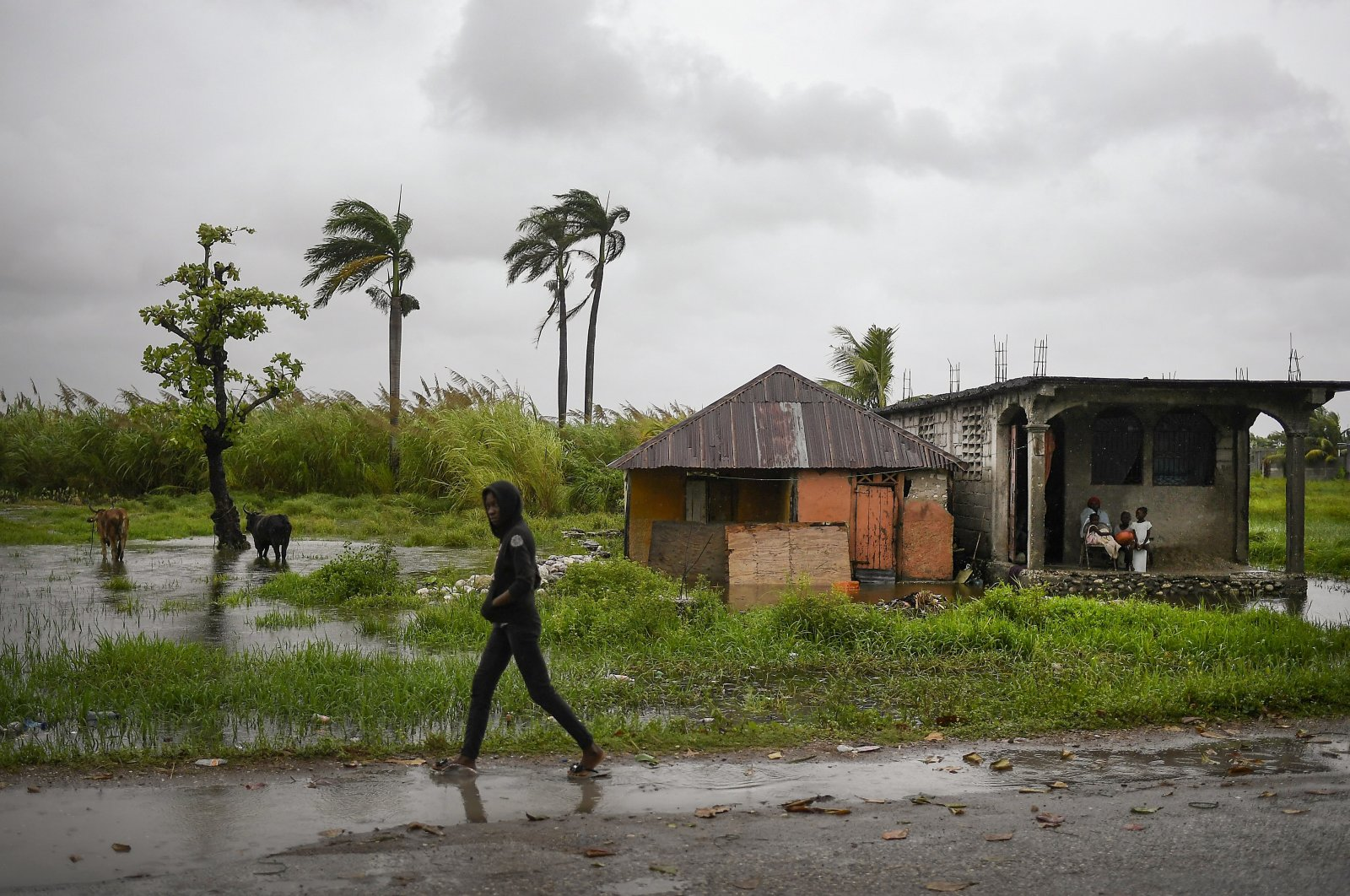 A man walks along a road in a slightly flooded area the morning after Tropical Storm Grace swept over the area in Trou Mahot, Haiti, Aug. 17, 2021. (AP Photo)