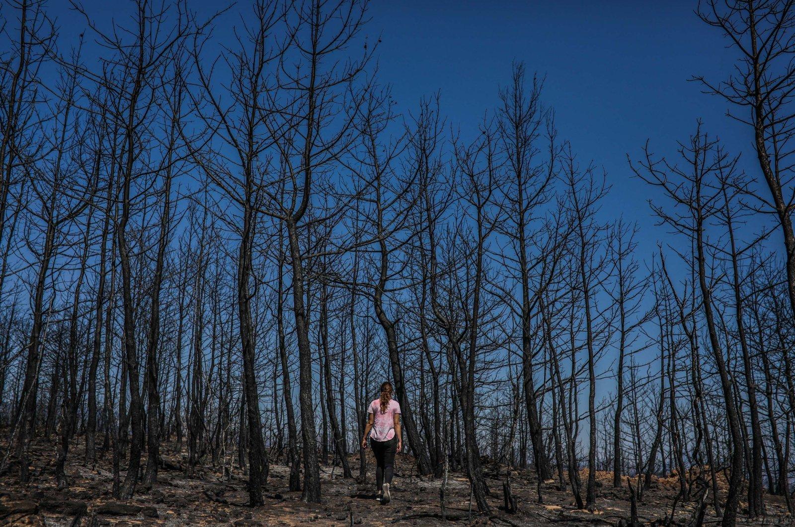 A woman walks among burned trees in Manavgat, Antalya, Aug. 20, 2021. (DHA Photo)