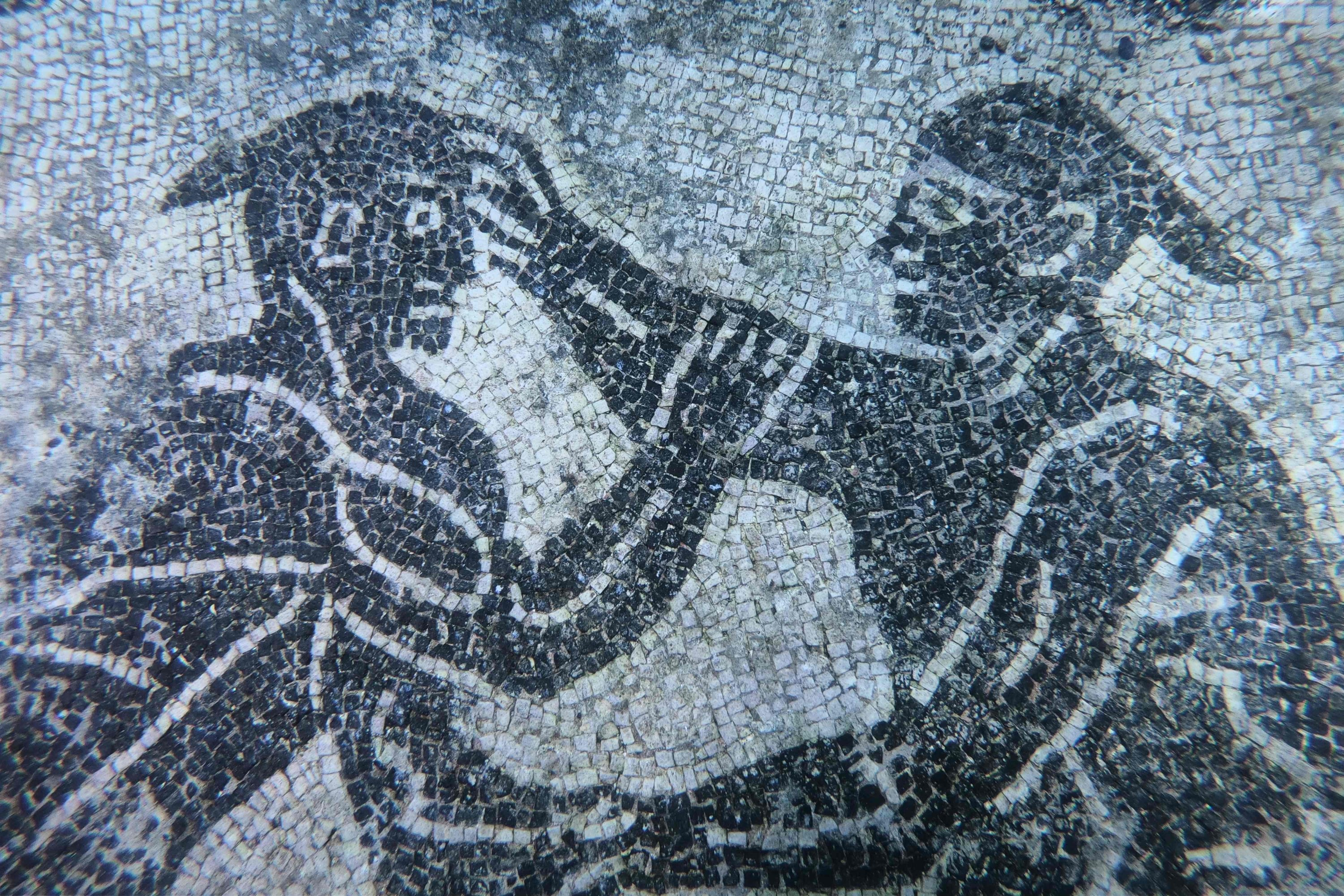 The detail of the mosaic from Villa a Protiro can beseen in the submerged ancient Roman city of Baiae, Pozzuoli near Naples, Italy, Aug. 18, 2021. (AFP Photo)