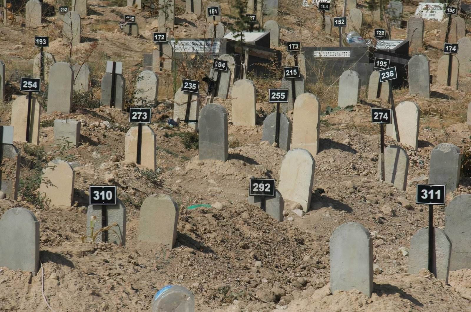 A view shows the common cemetery in Istanbul's Kilyos district, Aug. 25, 2021. (Sabah Photo)