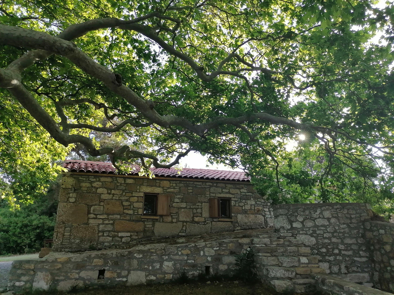 Ayazma Monastery. (Aiza Azam for Daily Sabah)