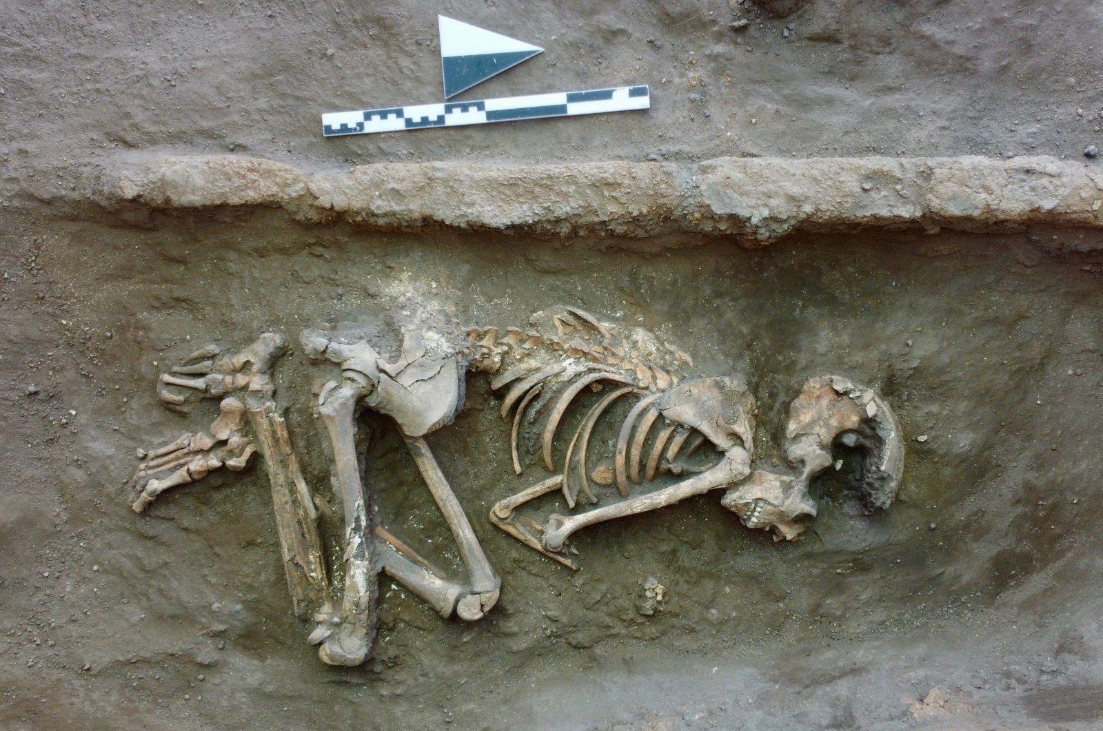 A burial site in Küllüoba, Eskişehir, central Turkey, Aug. 27, 2021. (AA Photo)