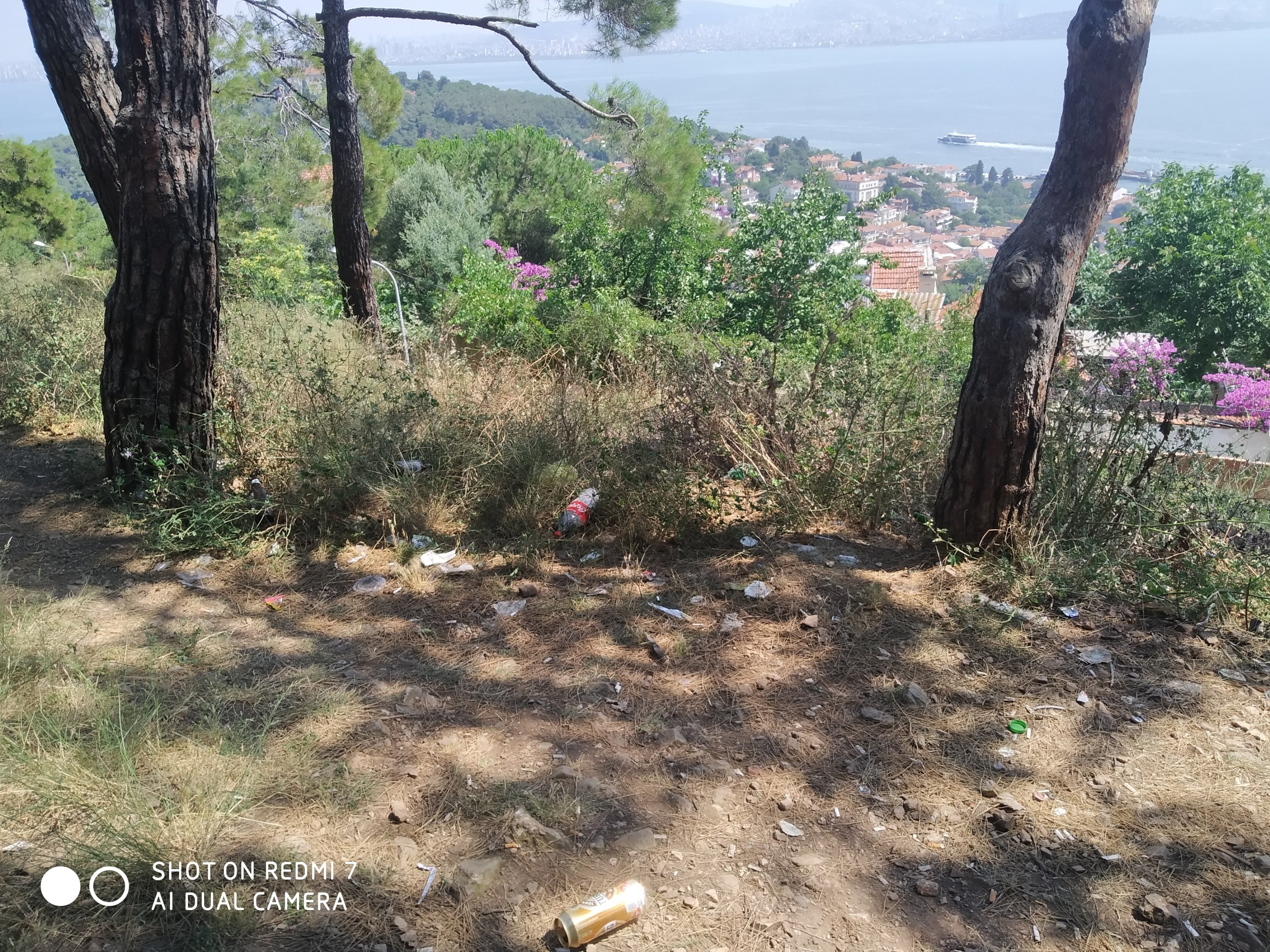 A forest area polluted with glass and plastic bags in Büyükada, Princes' Islands, Istanbul, Turkey. (Photo by Muhammet Ali Güler)