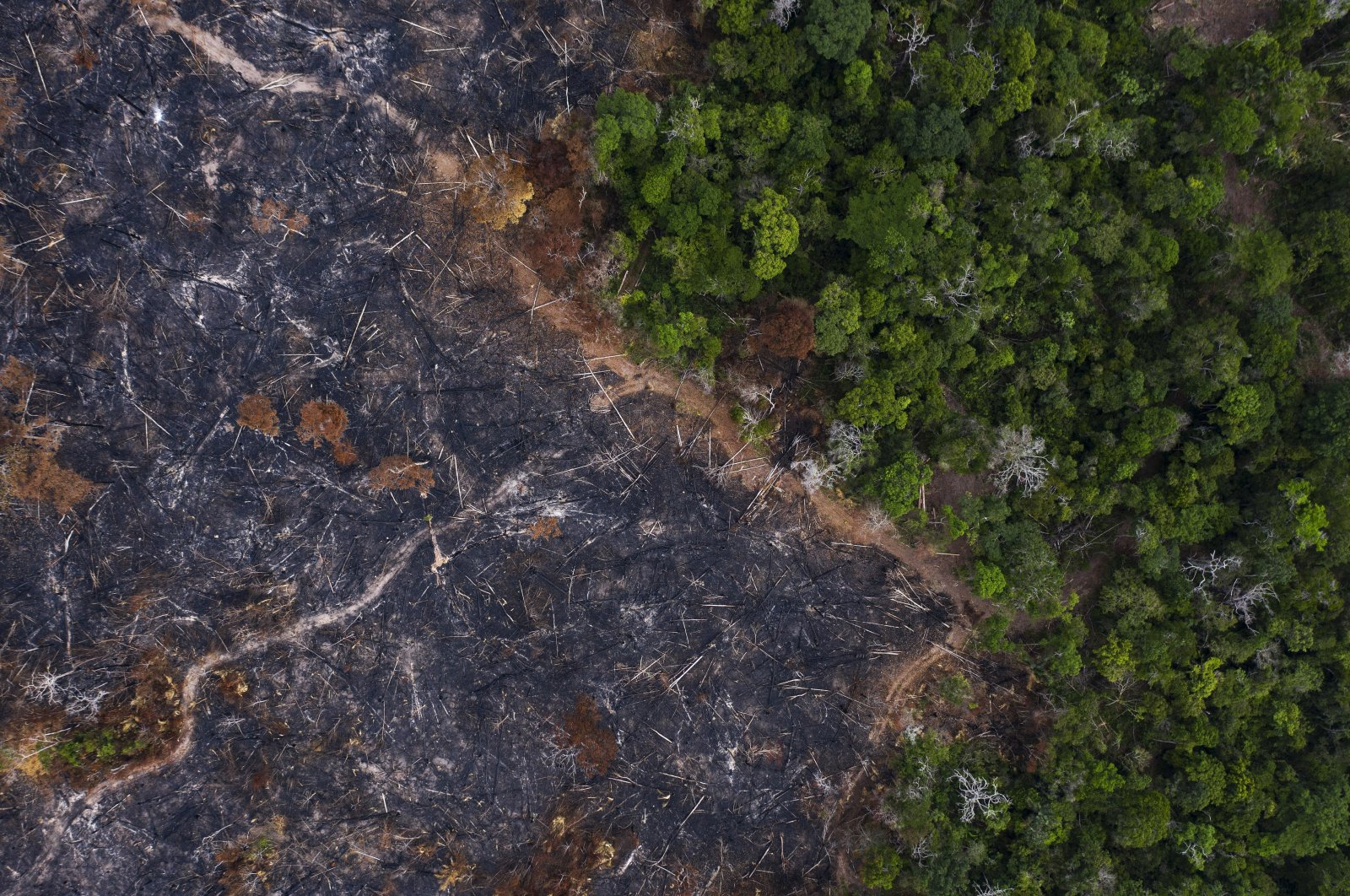 A burned area of the Amazon rainforest is seen in Prainha, Para state, Brazil, Nov. 23, 2019 (AP File Photo)