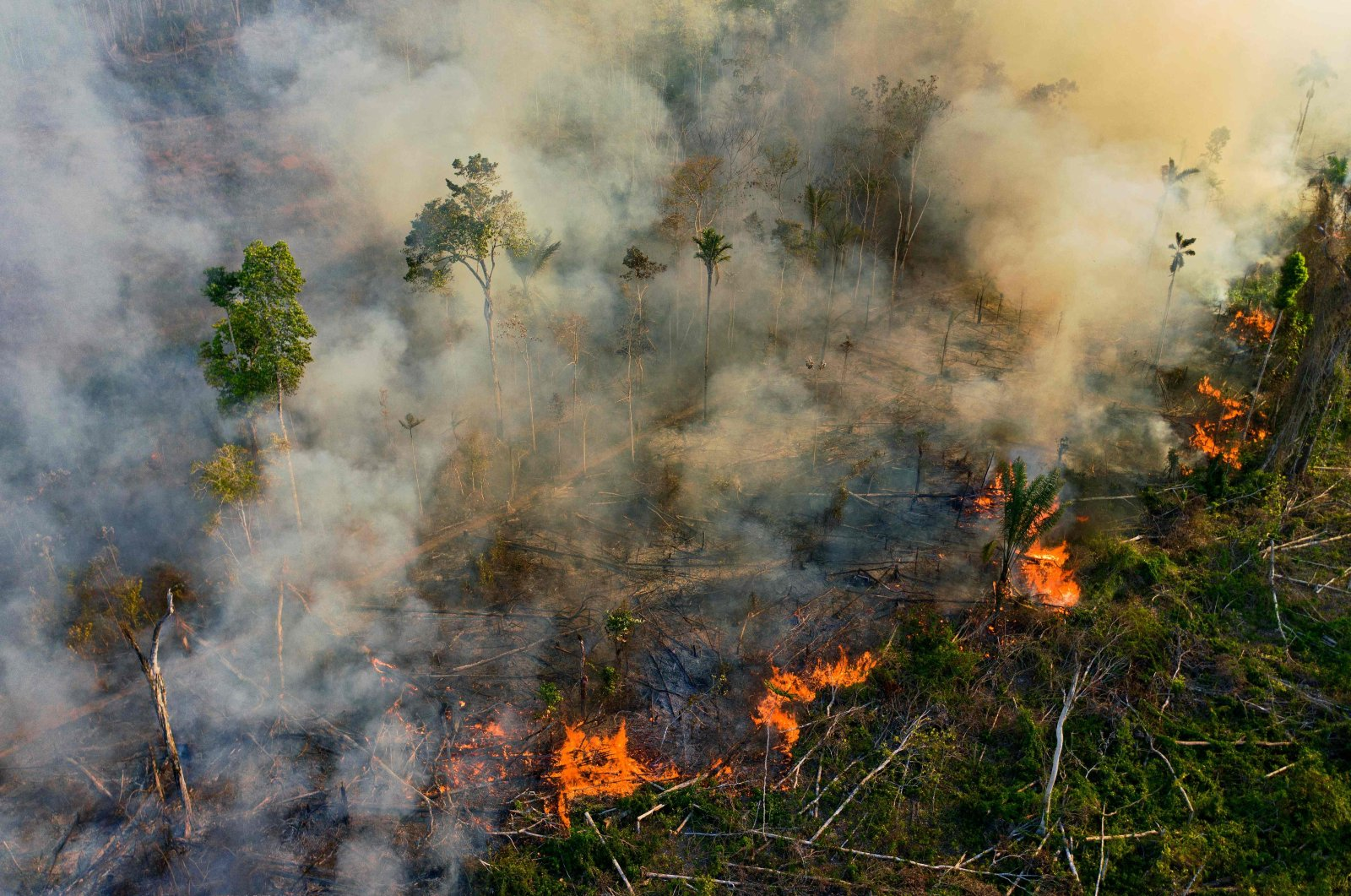 Smoke and flames rise from an illegally lit fire in the Amazon rainforest reserve, south of Novo Progresso in Para state, Brazil, Aug. 15, 2020. (AFP File Photo)