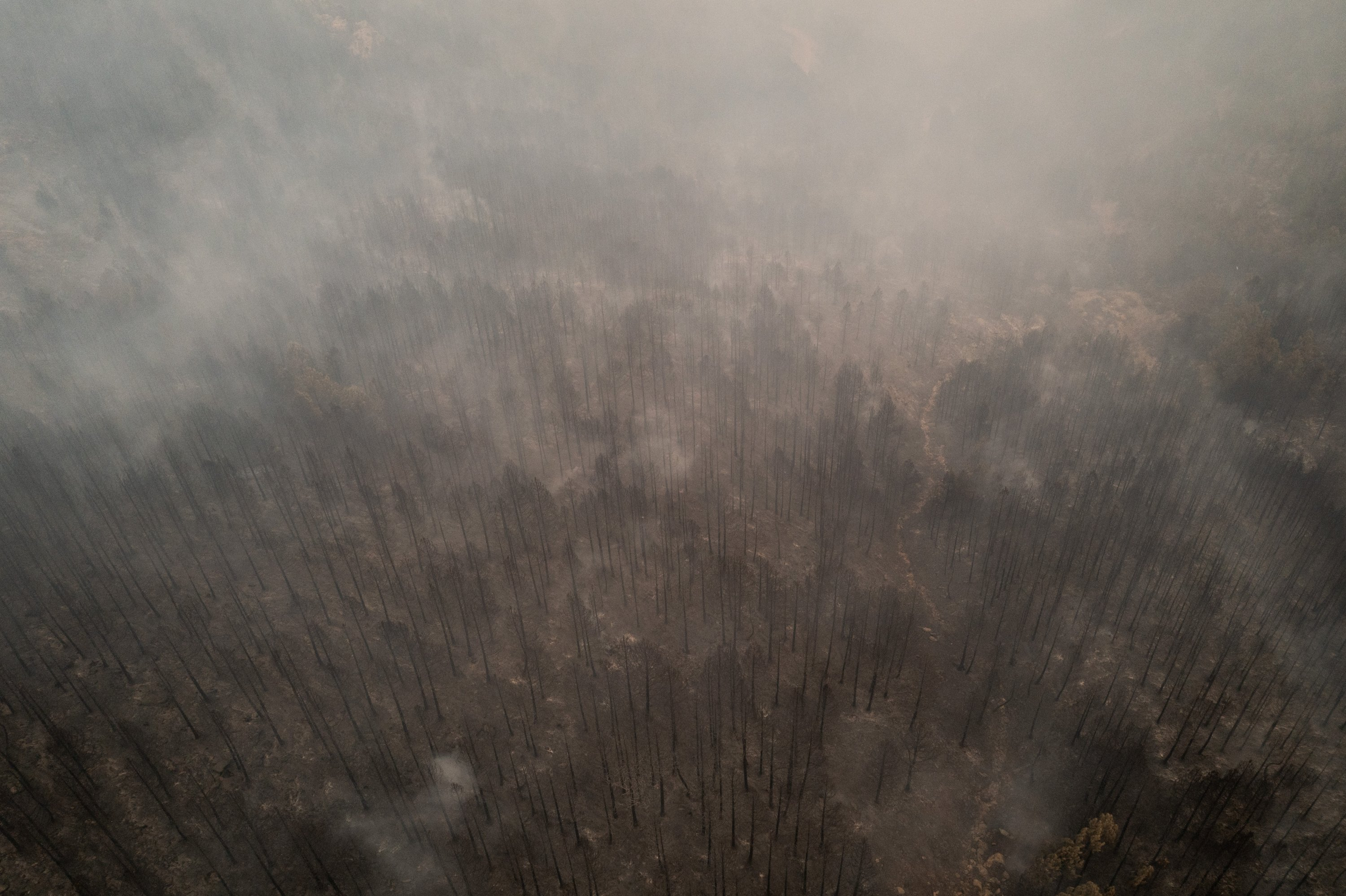 In this aerial photo taken with a drone, forest areas are seen burnt out after a large wildfire passed near the village of Kavaklıdere, Muğla, southern Turkey, Aug. 5, 2021. (Photo by Getty Images)