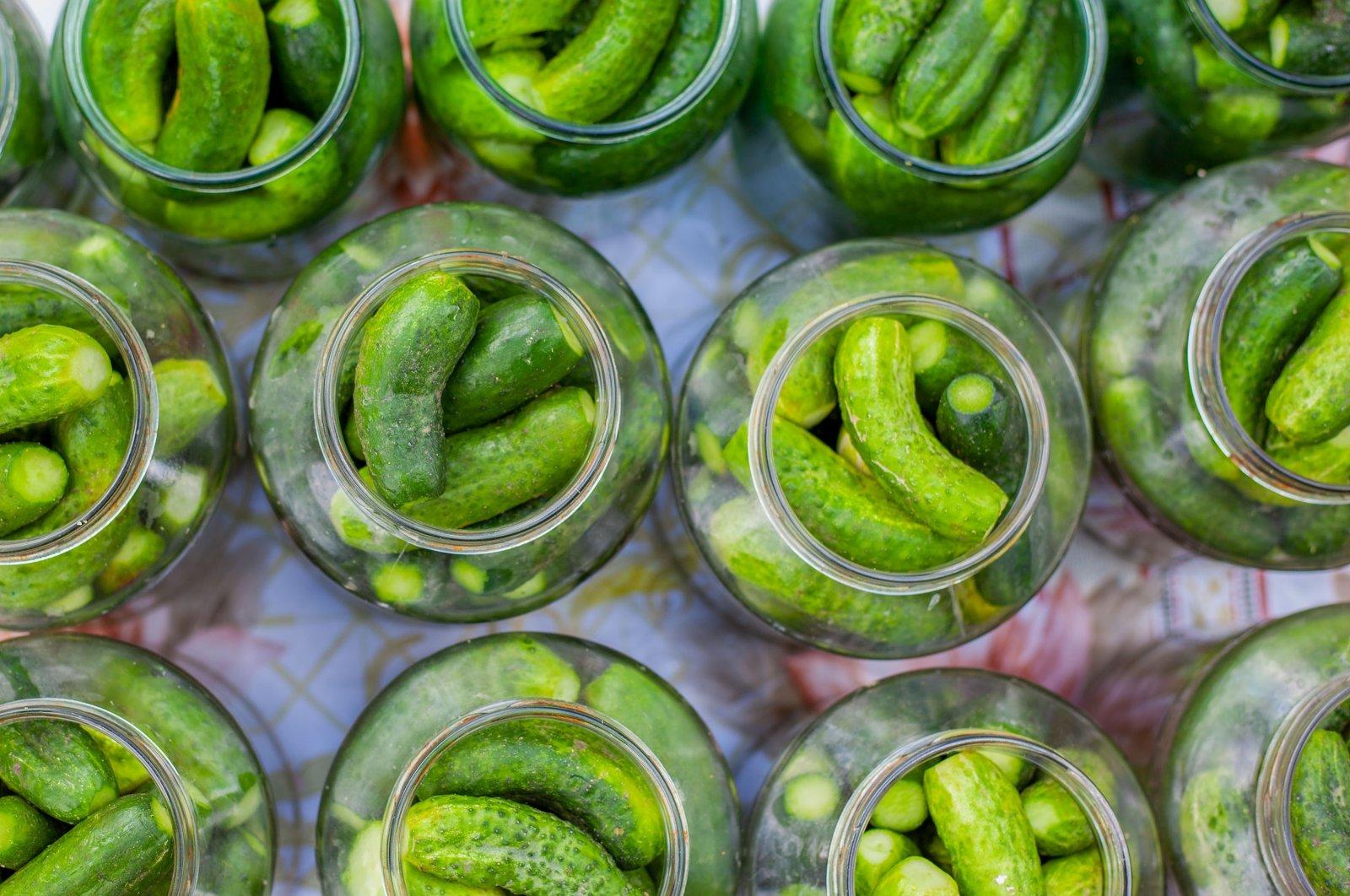 Pickled cucumbers, or gherkins, rest in jars.(Shutterstock Photo)