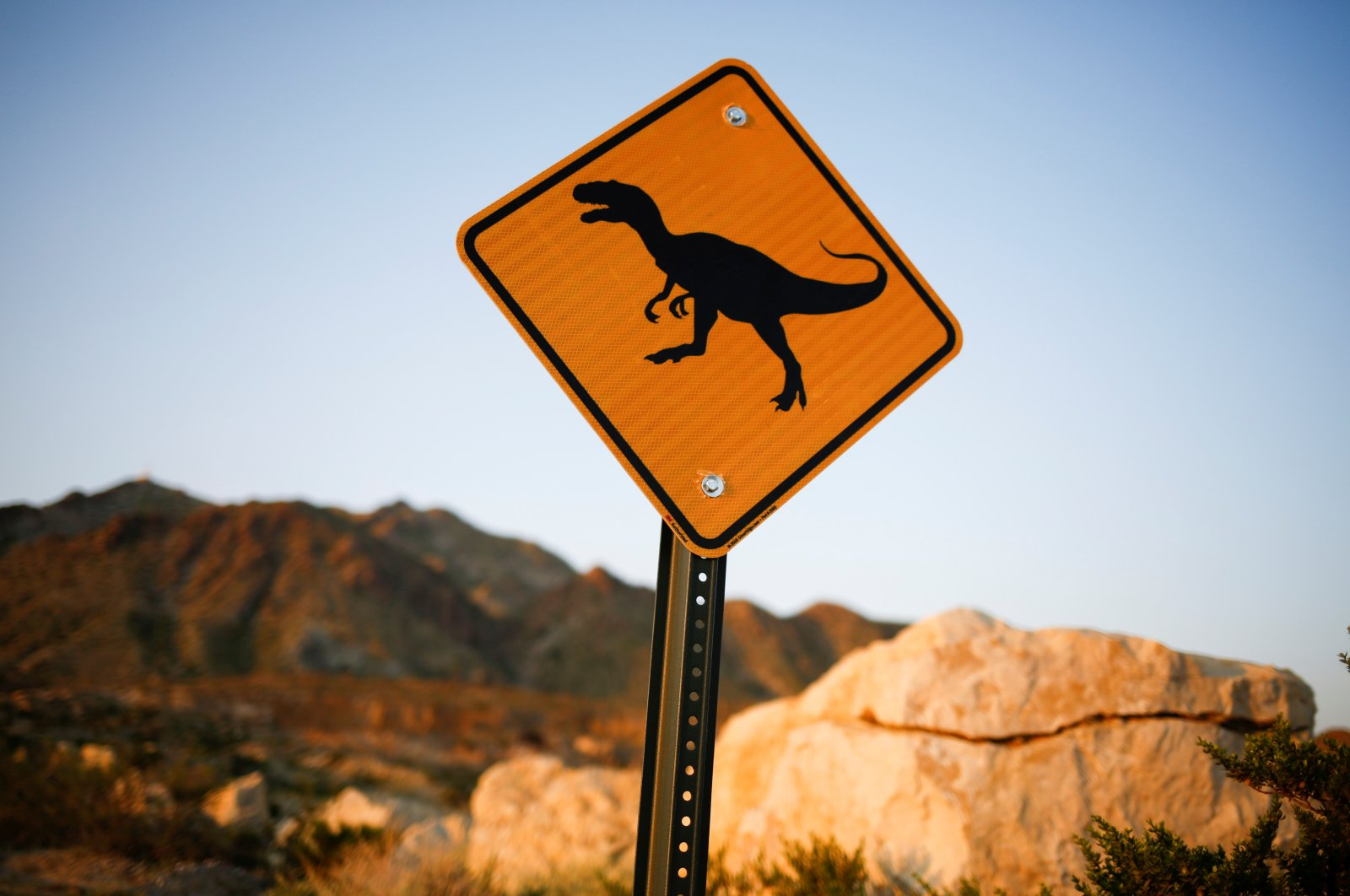 A sign with the image of a dinosaur is seen in the desert at Sunland Park, New Mexico, U.S., Sept. 9, 2021. (Reuters Photo)