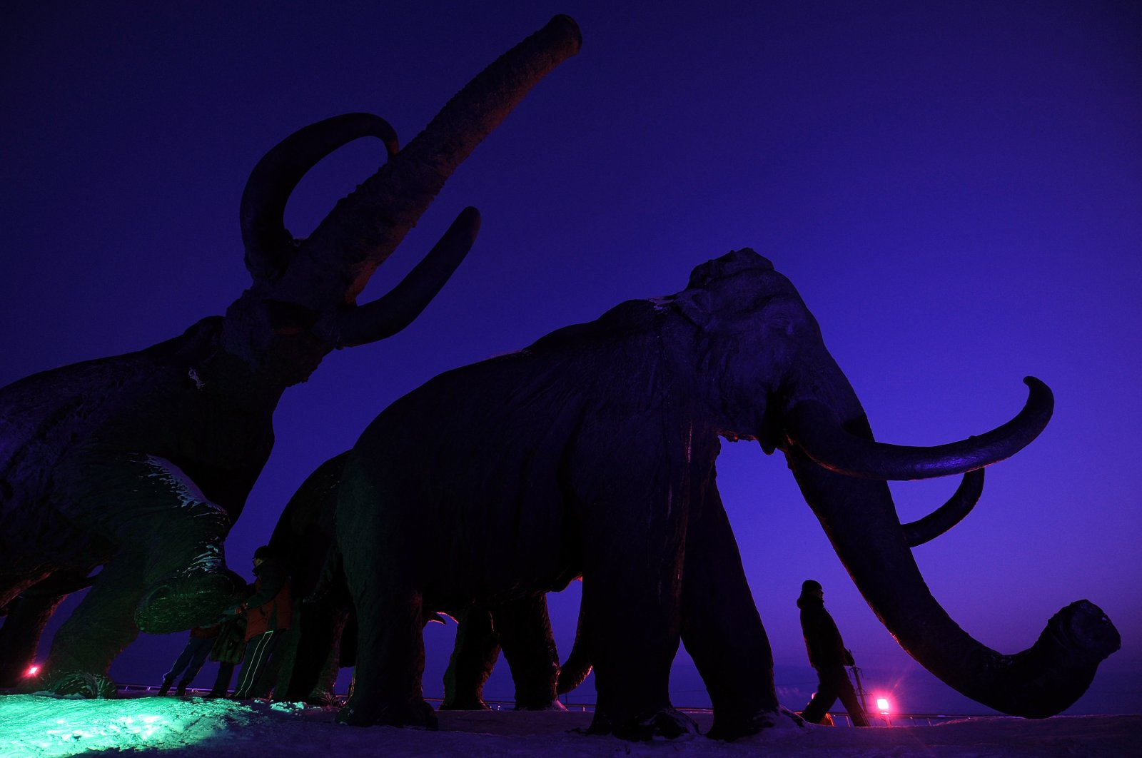 A person walks past giant bronze sculptures of mammoths during the World Biathlon Championships in Khanty-Mansiysk, Russia, March 7, 2011. (AFP File Photo)