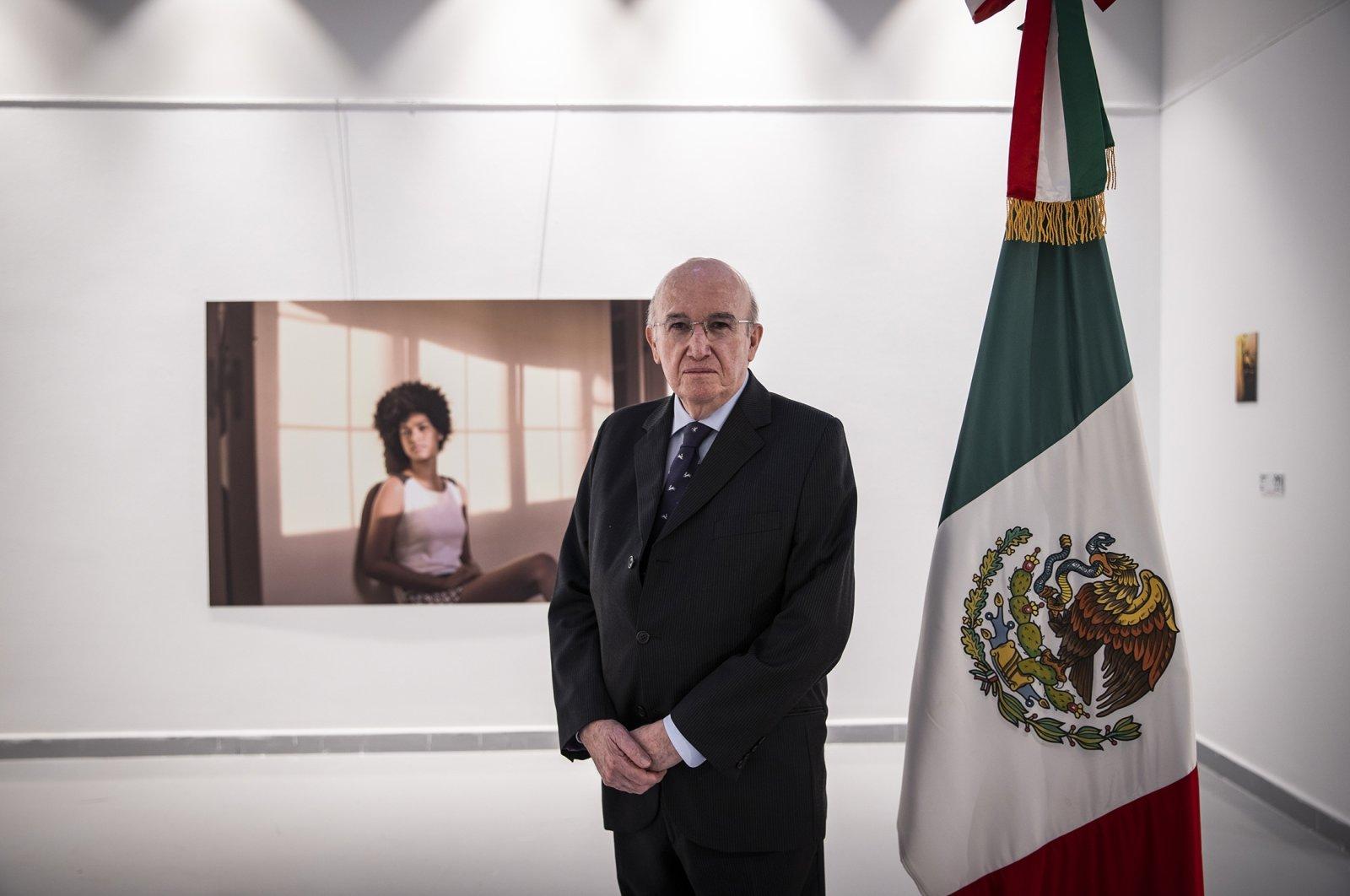Mexican Ambassador Jose Luis Martinez y Hernandez attends an exhibition in Ankara, Turkey, July 3, 2021. (AA File Photo)