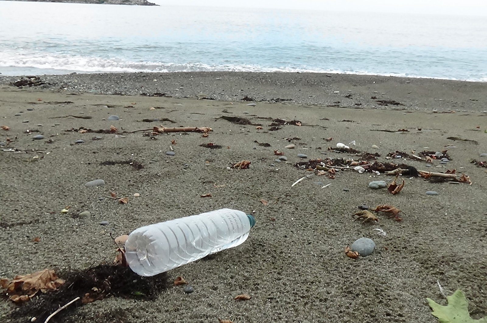 A plastic bottle dumped on the coast of Black Sea, in Trabzon, northern Turkey, Sept. 20, 2021. (DHA PHOTO)