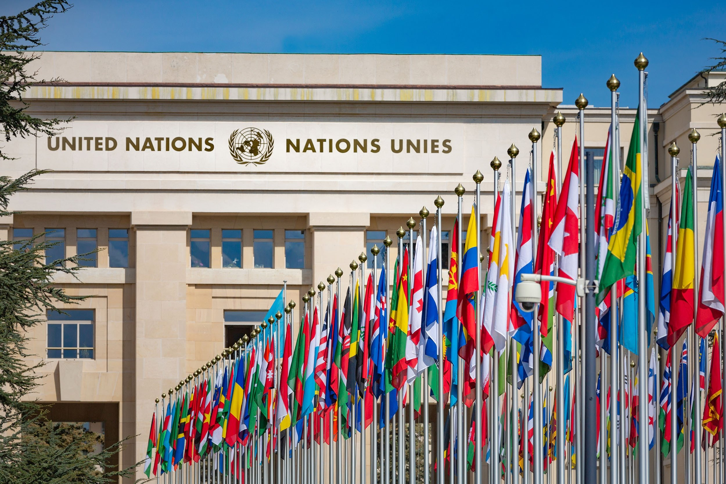 Crisis deepens in the international system and United Nations | Column