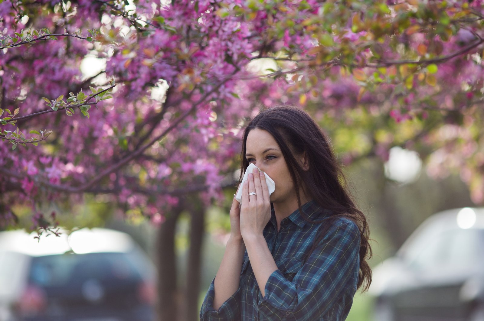 Pollen from trees and grasses can trigger allergy symptoms for people sensitive to pollen grains. (Shutterstock Photo)