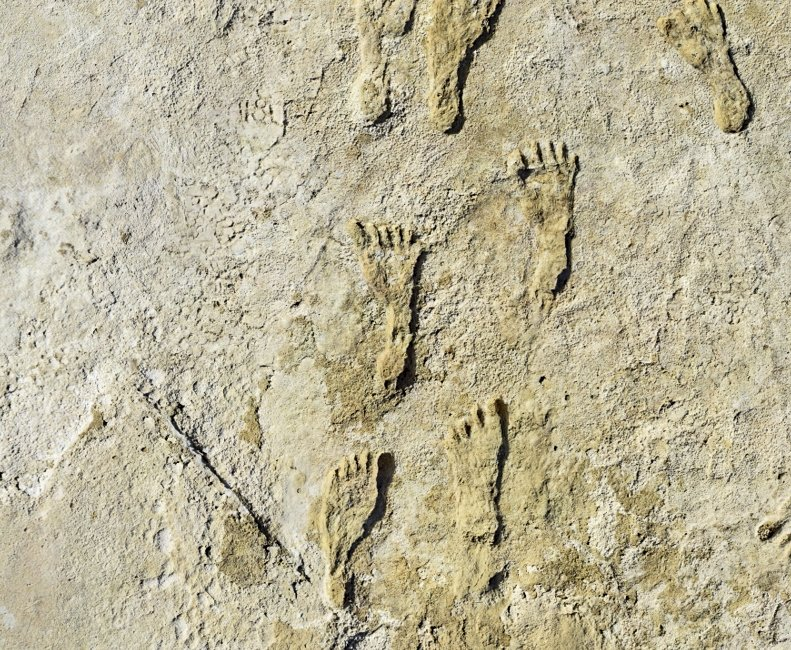 Fossilized human footprints can be seen at the White Sands National Park in New Mexico, U.S., in this undated photo made available in September 2021. (Nation Park Service via AP)