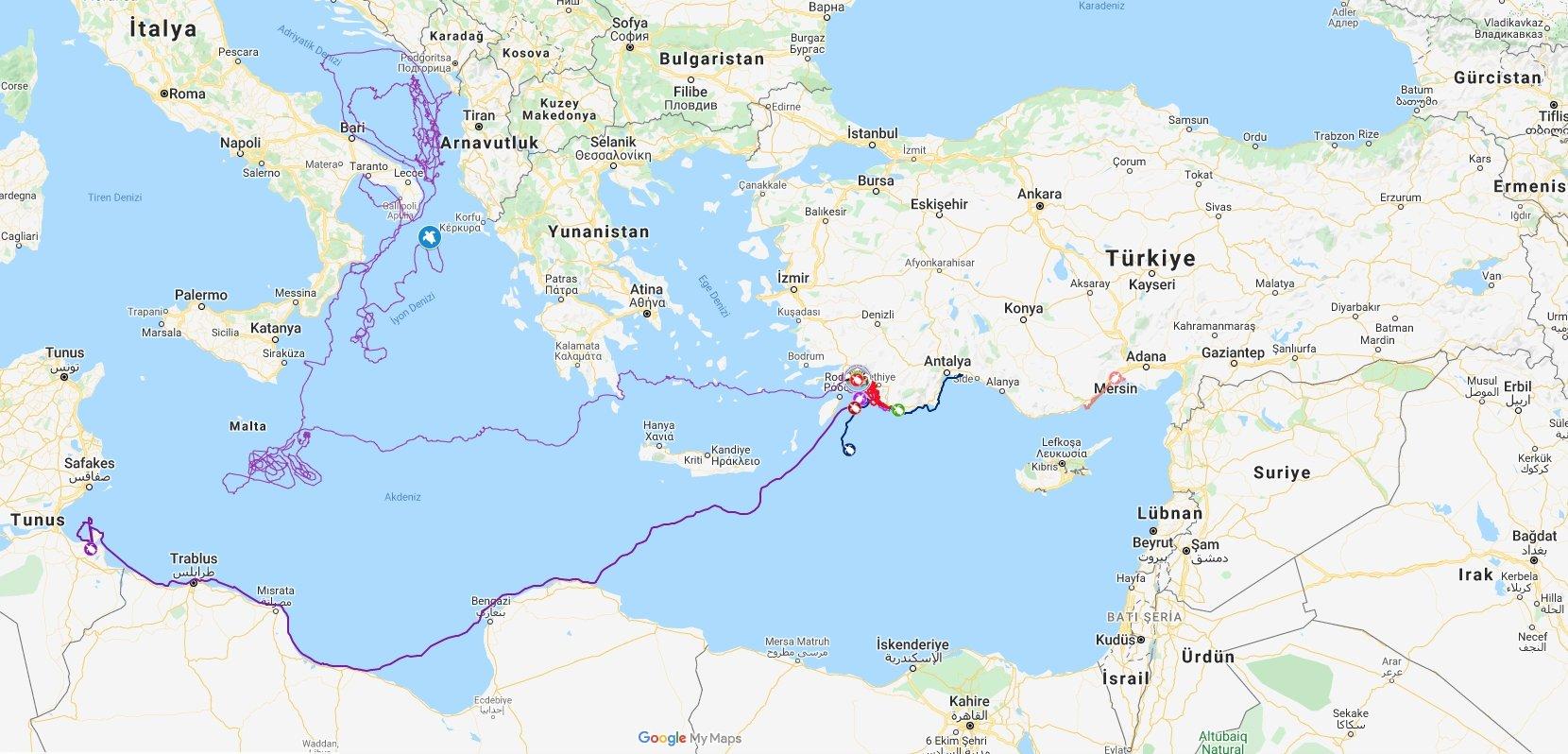 A map showing the movement of Tuba the loggerhead sea turtle. (AA PHOTO)