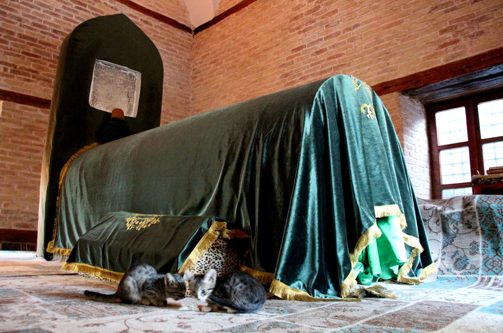 Cats photographed near the sandukas in the tomb of Pir Esad Sultan, Konya, central Turkey, Oct. 3, 2021. (AA Photo)