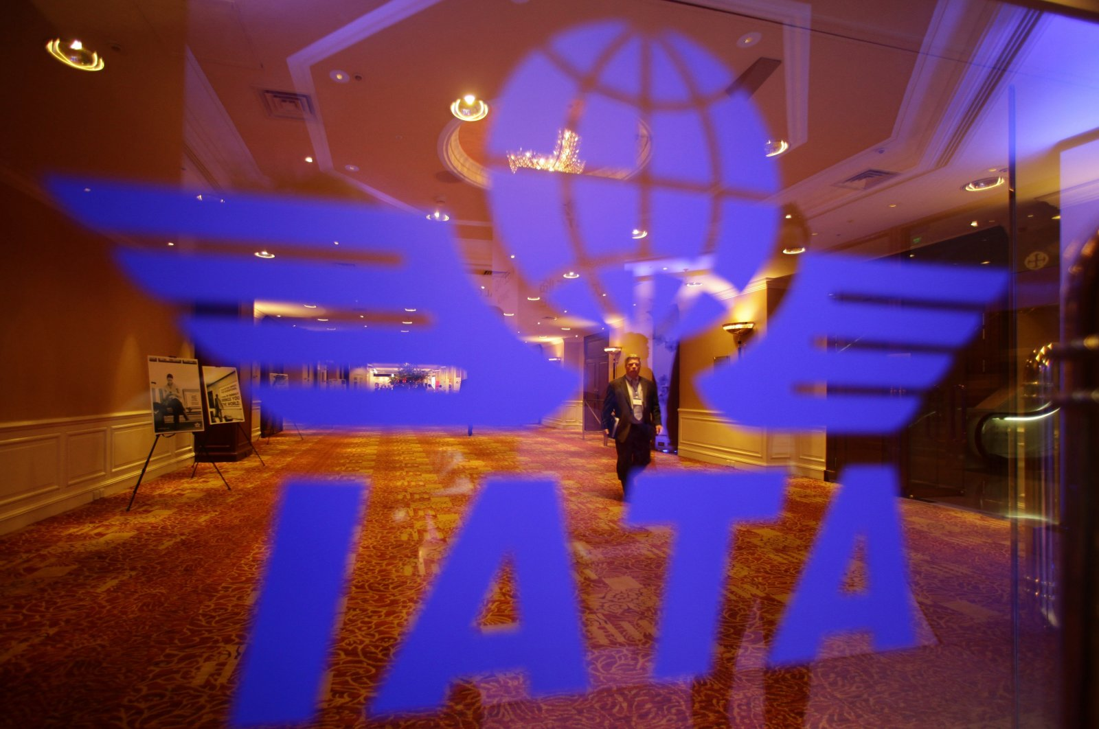 A delegate of the 68th International Air Transport Association (IATA) annual general meeting is pictured through an IATA logo in Beijing June 11, 2012. (Reuters File Photo)