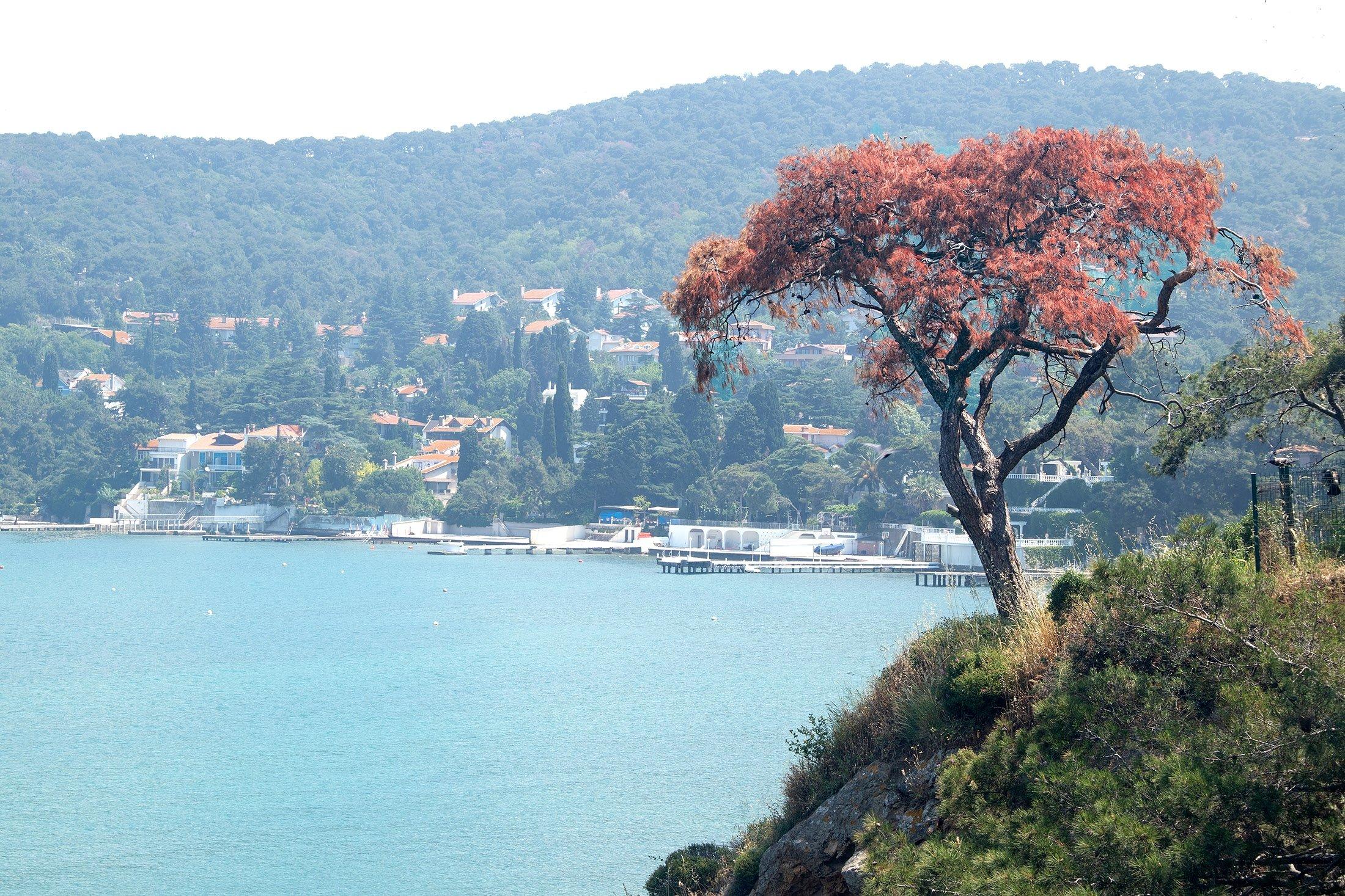 Dilburnu Nature Park overlooking the sea. (Shutterstock Photo)