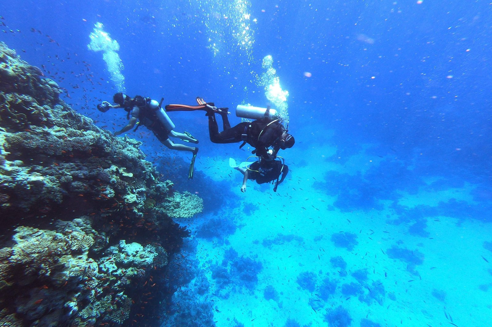 Scuba divers dive in the Red Sea waters by a coral reef near Egypt's resort city of Sharm el-Sheikh at the southern tip of the Sinai peninsula, Sept. 29, 2021. (AFP Photo)
