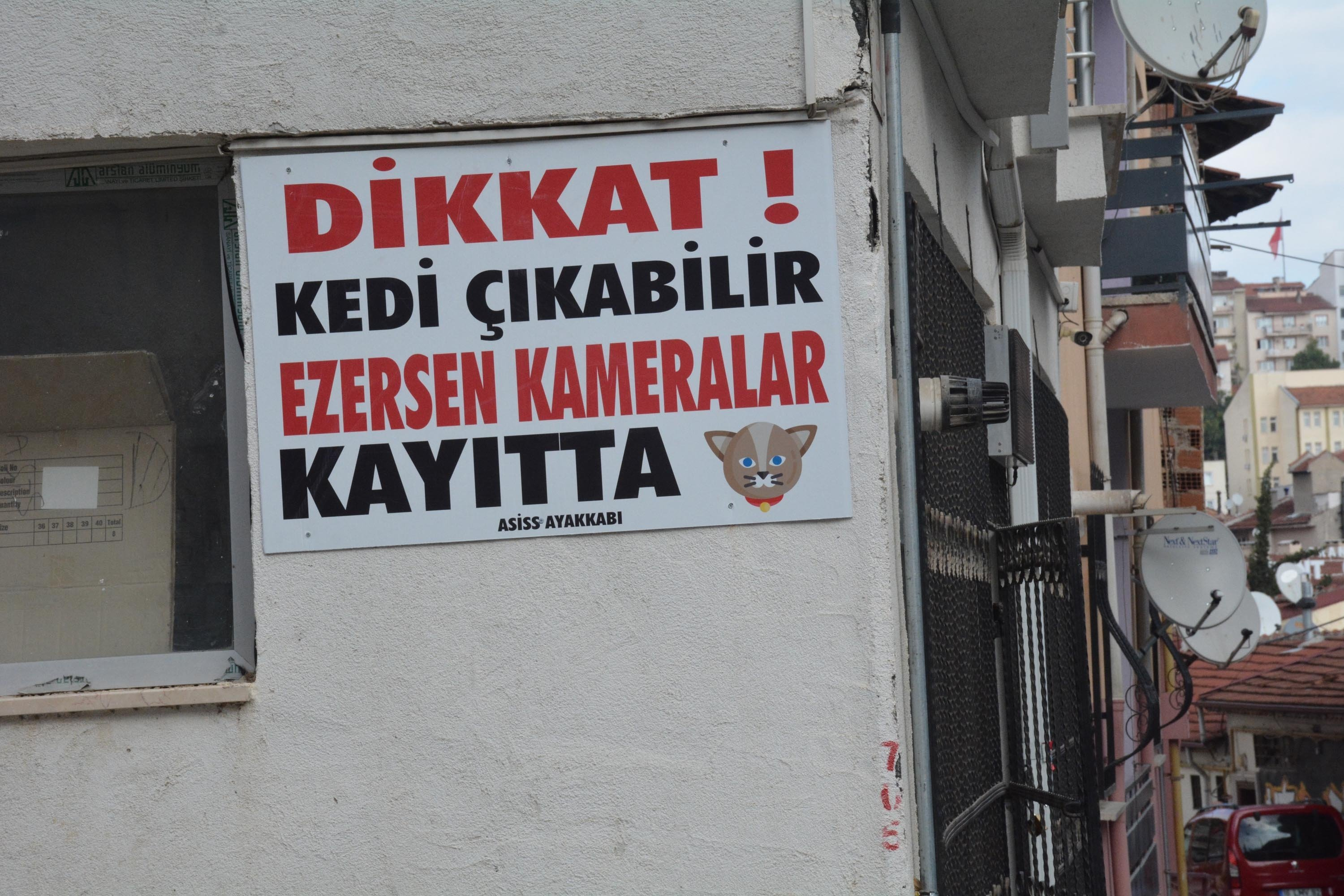 A sign says 'Attention! Cats may appear, if you crush the cat, the cameras are recording,' on the wallof Emrah Aslan's shoe store, in Gazipaşa neigborhood of Bilecik, Turkey, Oct. 12, 2021. (DHA Photo)
